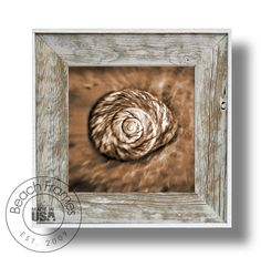 """14"""" x 14"""" spiral shell signature series canvas artwork by photographer Jeff Maher within a white washed weathered reclaimed cypress wood 22"""" x 22"""" frame. Not made from dingy pallet wood. Made in the USA. Visit www.BeachFrames.com"""