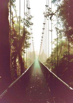bridge to happiness.