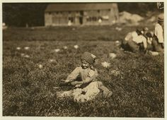 Susie Fava. Picks 8 pails a day. Said 8 years old. Gets 8 cents a pail. Location: Rochester [vicinity] Eldridge Bog, Massachusetts 1911 photo by Lewis Hine