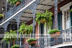 new orleans style doors | The Spanish-style architecture of the French Quarter of New Orleans ...