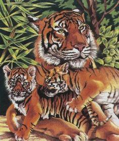 10 Inch x12 Inch Pencil By Number Kit - Tiger & Cubs by Reeves. $4.33. Includes: pre-printed board, 10 colored pencils, pencil sharpener & instructions.. Finished size: 10 Inch x12 Inch. REEVES-Pencil-By-Number Kit.  These pencil-by-number kits are perfect for rainy days and party activities.  Simply follow the numbers on your overlay and the outlines on your board to create this beautiful picture.  Each kit contains a pre-printed board; numbered overlay; ten ...