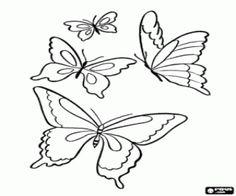 Resultado de imagem para desenho de borboletas para colorir