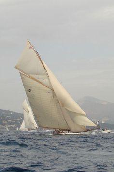 viatalium:Old style sailing - tons of sail area.