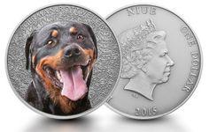 Niue 1oz Silber German Rottweiler (Deutscher Rottweiler) 2015 Antique-Finish Limited Edition
