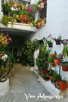 Mecina Fondales.La Alpujarra.Granada.