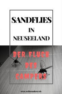 Sandflies in Neuseeland