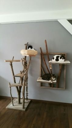 cat diy furniture Mooi leven t - Pet Furniture, Apartment Furniture, Cardboard Furniture, Furniture Projects, Diy Cat Tree, Boho Dekor, Cat Playground, Cat Room, Cat Wall