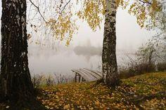 Река Нарма. Рязанская область.  #Красоты_России #КрасотыРоссии #Россия