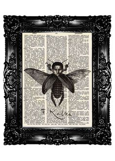 Franz KAFKA Metamorphosis  Dictionary Print  Upcycled by nommon, $7.99