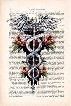 Medical Posters, Medical Symbols, Medical Art, Medical Doctor, Bureau D'art, Arte Com Grey's Anatomy, Caduceus Tattoo, Medical Wallpaper, Doctor Office