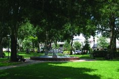 Winter Park is a Central Florida suburb located just 30 minutes North of Orlando's major theme park attractions. Home to the state's first four-year college—Rollins College, Winter Park is a quintessential historic college town.