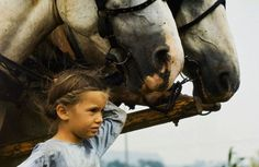 Reminds me of being little - my cousin's horses were so big!