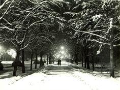 Nicolae Ionescu (1903 - 1975) Fotograf al Bucurestilor – altmarius 1975, Snow, Outdoor, Outdoors, Outdoor Games, Outdoor Living, Eyes