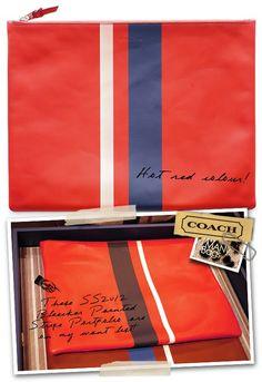 Coach racing stripe men's clutch.