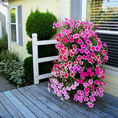 Diy Tutorial, Diy And Crafts, Home And Garden, Outdoor Structures, Plants, Gardening, Design, Decoration, House