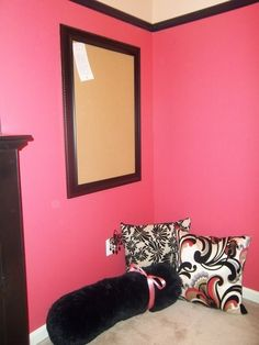 black moulding + bright wall colors, great for girls room