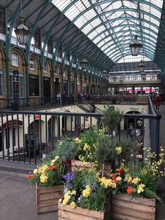 My Covent Garden