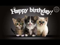 Happy Birthday Dancing Cats on a Piano Ecard. - Happy Birthday Dancing Cats on a Piano Ecard. Happy Birthday Dancing, Funny Happy Birthday Song, Happy Birthday Quotes For Friends, Happy Birthday Video, Happy Birthday Pictures, Birthday Songs, Birthday Cats, Funny Friends, Happy Birthday With Cats