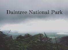Destination Daintree and Cape Tribulation | Adventurous Trails