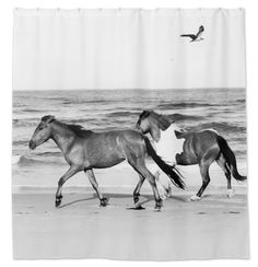 Galloping Beach Horses Equestrian Shower Curtain