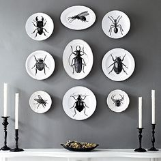 Bug PlatesDownload our free images, below, then use them to create custom decals that work on smooth, nonpourous surfaces. Follow the decal-paper manufacturer's instructions to transfer the images. Then stick the decals to the dishes and spray on a coat of clear high-gloss acrylic finish. Hang your infested dishes in a swarm for intimidating impact.
