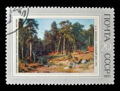 postage stamp: Cancelled postage stamp printed by Soviet Union, that shows painting of pine forest by Shishkin, circa 1971.
