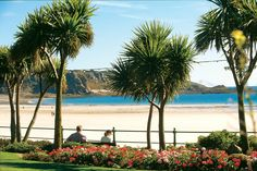 The most gorgeous, sandy beach Beautiful Islands, Beautiful Places, Jersey Channel Islands, Holiday Places, Sandy Beaches, Beautiful Landscapes, England, Outdoor, Homeland