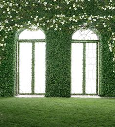 Customize vinyl print cloth green wall flowers window photography backdrops for wedding photo studio portrait background Window Photography, Photography Studio Background, Photography Backdrops, Wedding Photography, Photography Backgrounds, Flower Window, Flower Wall, Wall Flowers, White Flowers