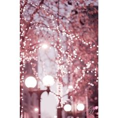 Pinterest ❤ liked on Polyvore featuring backgrounds, pictures, fillers and photos