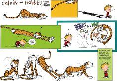 Calvin and Hobbes Comic Strip, May 12, 2013 on GoComics.com