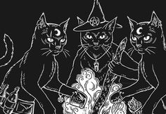 Some more progress on this new design... Coming in March ✨ #catwitch #witch #witchcraft #blackcat #catlady