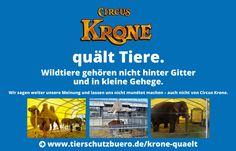 Cirkus Krone quält Tiere. | Wildtiere gehören nicht hinter Gitter und in kleine Gehege.
