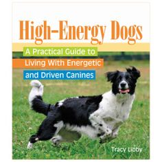 HIgh-Energy Dogs: A Practical Guide to Living with Energetic and Driven Canines | Books | PetSmart