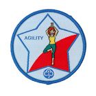 Guide Agility Badge - 2013 onwards
