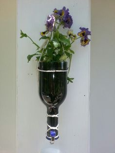 Cut wine bottle planter. #G2Bottle Cutter #bottleart #upcycle