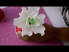 Como Hacer Magnolias - YouTube