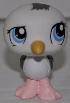 Seagull #1456 (White, Blue Eyes, Pink Feet) Littlest Pet ... http://www.amazon.com/dp/B0085M3XLS/ref=cm_sw_r_pi_dp_ty2ixb0M9SPCF