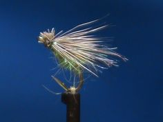 Fly Tying a GSS Caddis with Jim Misiura