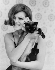 Claudia Cardinale and her people. Claudia Cardinale is an Italian Tunisian film actress. or your mothers rock star? Claudia Cardinale, Siamese Cats, Cats And Kittens, Kitty Cats, Kittens Cutest, I Love Cats, Cool Cats, Celebrities With Cats, Celebs