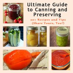 The Ultimate Guide to Canning and Preserving - 20+ Canning Recipes and Tips via http://typeaparent.com/canning-preserving-recipes-tips.html