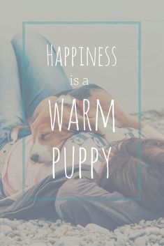 Happy #NaitonalPuppyDay! Repin and spread the #puppylove