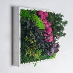 Tableau végétal stabilisé sans entretien jäkälä 25 x 25 cm