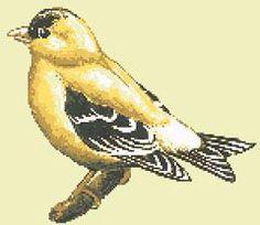 Goldfinch Bird, free cross stitch pattern from Alita Designs