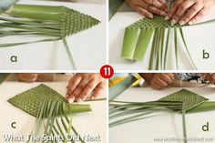Flax weaving flowers with Wanda Isaac on St Helena Island. Flax Weaving, Basket Weaving, Flax Flowers, Paper Flowers, Maori Patterns, Weaving Process, Leaf Crafts, Paper Crafts, Diy Crafts