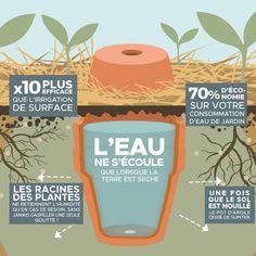 Pots D'argile, Clay Pots, Veg Garden, Edible Garden, Vegetable Gardening, Garden Pots, Permaculture Garden, Terrace Garden, Potted Garden