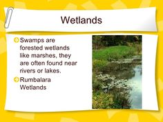 Wet And Dry Environments Year 2, Wet And Dry, Environment, Geography, School Ideas, Weather, Science, Teaching, Play
