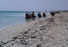 Things I Want To Do in Cancun ~ Ride a horse on the Beach (http://www.explorecancun.com/tours/cancun-tours/cancun-beach-horse-back-riding.html)
