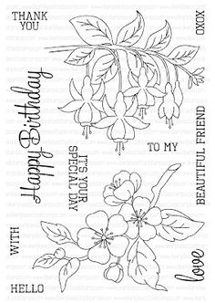 'beautiful friend' stamp set by clearly besottedStamping & Sharing: August Release Reveal & Giveaway