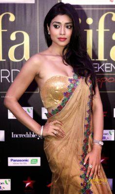South Indian Super Actress Shriya Saran (4)