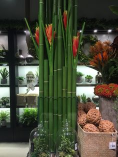 Bamboo with tropical flowers Faux Flower Arrangements, Table Arrangements, Faux Flowers, Tropical Flowers, Floral Wedding, Jazz, Bamboo, Floral Design, Inspiration
